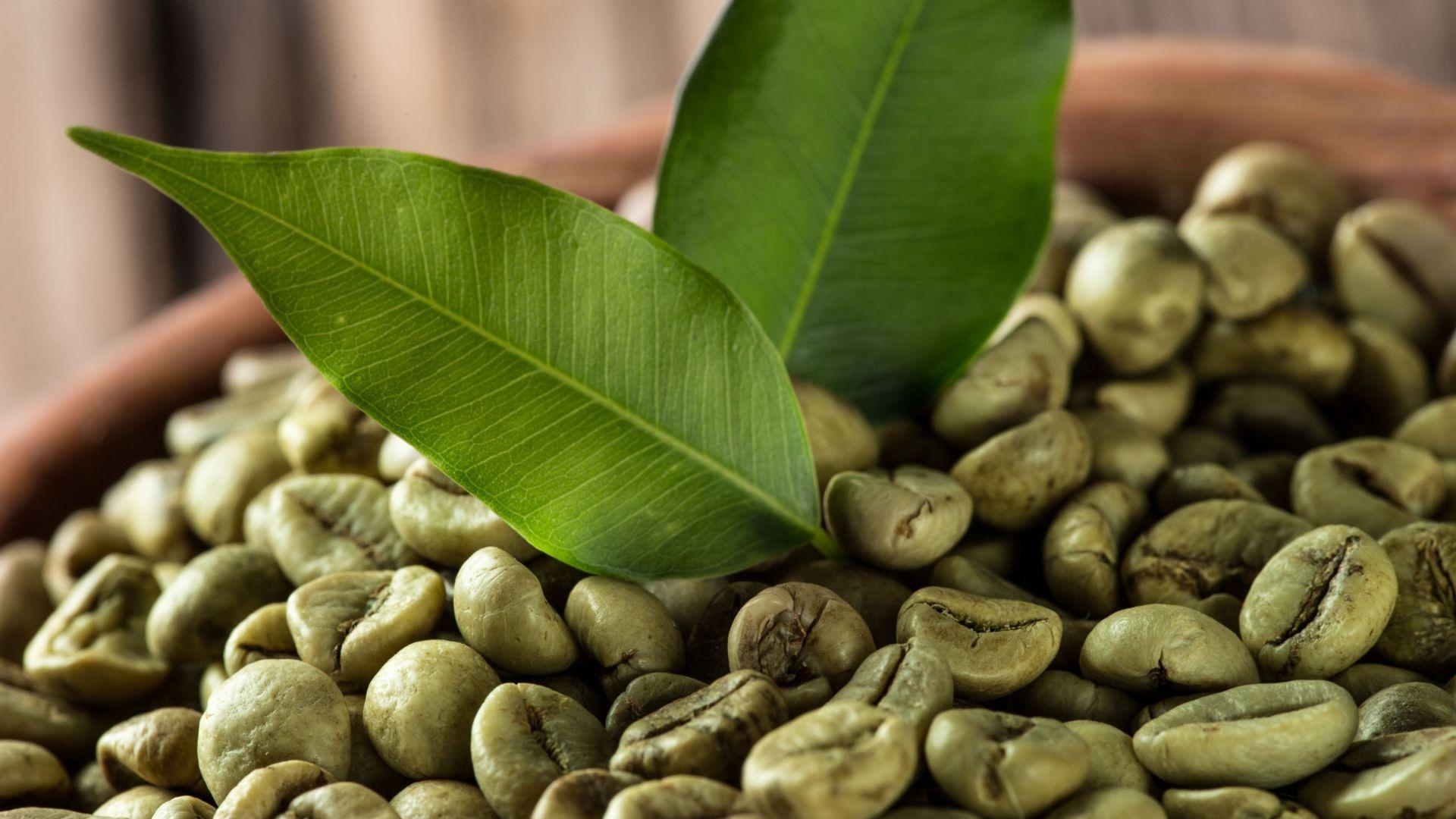 nyers kávé